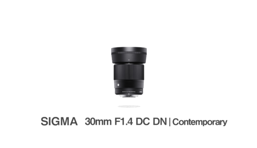 SIGMA 30mm F1.4 DC DN : Sonyα6400にオススメのシグマのAPS-C用単焦点レンズ【 ソニーEマウント用】