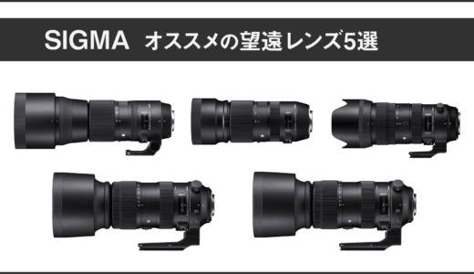 【2019年最新】SIGMA(シグマ)のおすすめ望遠ズームレンズ5選